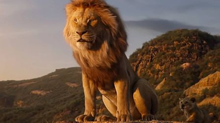 The new photo-real revisiting of the Disney classic The Lion King Photo: Disney