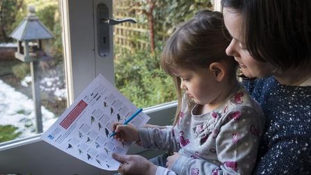 The RSPB's Big Garden Birdwatch encourages birdwatchers and families to keep record of bird numbers