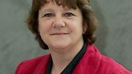Sandra Gage called for councillors to be included in the council's wellbeing policy following the in