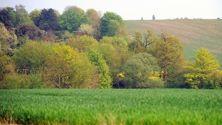 Fields in Hartest Picture: ARCHANT