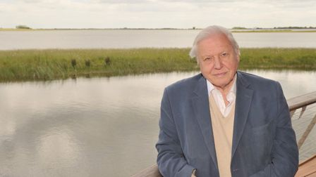 Sir David Attenborough praised the children in Year six at Clare Community Primary School for their