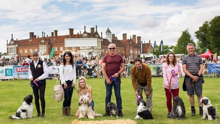 Dogs and owners will both find something to entertain them at the 2019 Suffolk Dog Day Picture: RICH