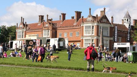 This year's Suffolk Dog Day is set to raise thousands for good causes Picture : SEANA HUGHES
