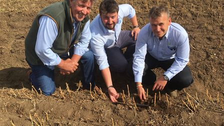 James Foskett, AHDB's David Wilson and farm manager Mike Shapland Picture: SARAH CHAMBERS