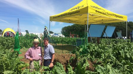 BBRO held its Beetfield19 at itsThelveton trials site, near Diss: Philip Draycott with Alex Mann, ch