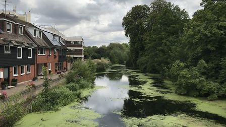 The River Colne at Castle Park in Colchester after an Environment Agency team cleared some of the we