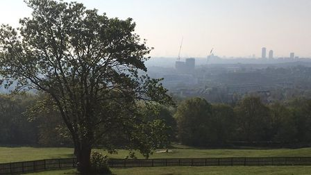 The view from Alexandra Palace looking towards central London. Picture: CARL MARSTON