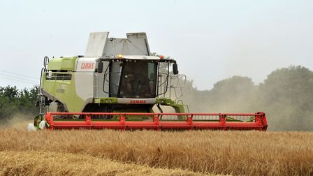 Harvesting the fields in Butley Picture: SARAH LUCY BROWN