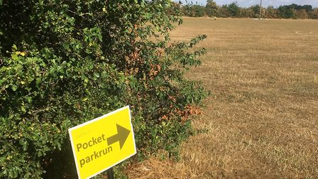 A good sign: Pocket parkrun is in this direction. Picture: CARL MARSTON