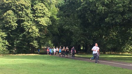 Runners emerge through the trees at last weekend's Cassiobury parkrun, in Watford, one of Carl Marst