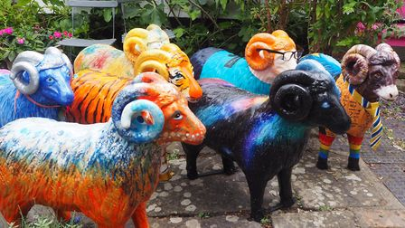 The flock of decorated statues from the Eye Sheep Art Trail was sold by auction, by Clarke & Simpso