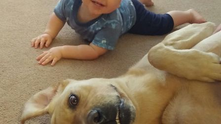Charlie loves playing with the children Picture: HEIDI FARROW