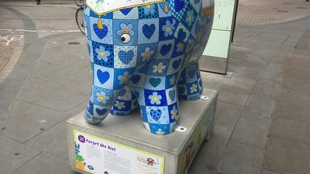 The Elemer elephant art trail, in Ipswich, with culminate in an auction of elephants in Ipswich Cor