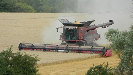 Farmers don't know what is going to happen to their farm subsidy regime Picture: ALLISON BALAAM