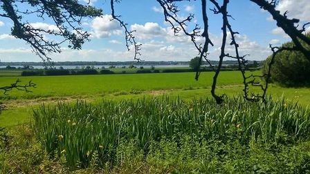 Award-winning Pink Shed beauty salon at Brantham, overlooking the River Stour. Picture: THE PINK SHE