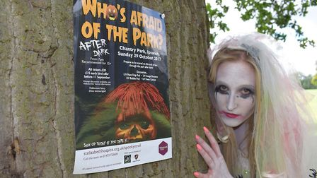 Poster for Who's Afraid of the Park? Taking place on October 29. Picture: ST ELIZABETH HOSPICE