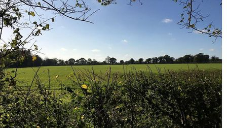 The land between Wangford and Reydon that could have been earmarked for possible gravel extraction.