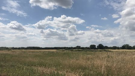 Farmland - currently grassland - at Home Farm, Peldon, near Colchester, which is being offered up fo