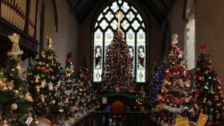 Christmas trees at St Peter & St Marys Church, Stowmarket Picture: graham meadows/citizenside.com