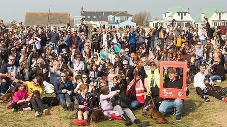 Almost 600 people took part in the previous event Picture: SOUTHWOLD SAUSAGE DOG WALK