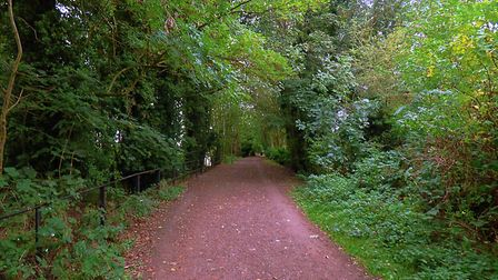 Autumn colours starting to appear on the Valley Trail from the Ballingdon end in Sudbury Picture: MA