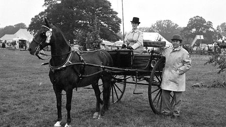 A horse and cart taking to the ring at the Tendring Show in 1974 Picture: NEWLING GOODE