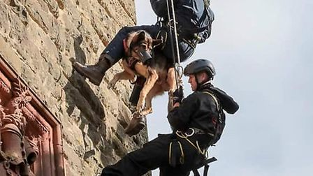 Finn and Dave abseil down the Abberley Clock Tower in Worcestershire Picture: DK9 SECURITY