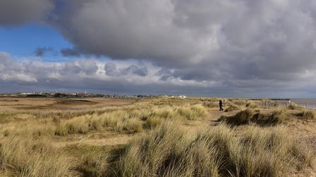 Walberswick in the Suffolk Coasts & Heaths AONB Picture:Sarah Lucy Brown
