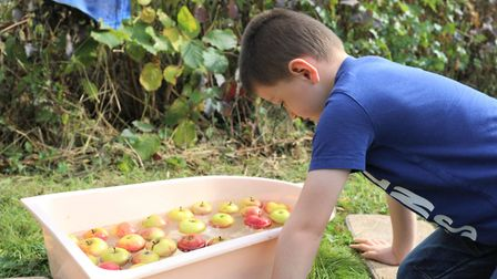 Children enjoying the picking and pressing of apples at Foxburrow Farm's annual apple day. Picture: