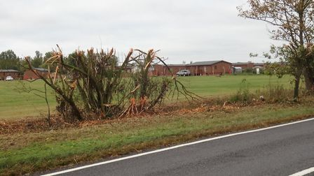 Hedges near Stonham Barns were recently cut back on the A1120 roadside Picture: CONTRIBUTED