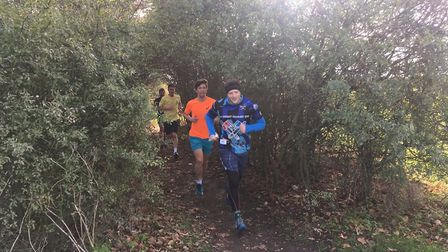 Runners negotiate a tree-line approach to the finish of the Letchworth parkrun. Picture: CARL MARSTO