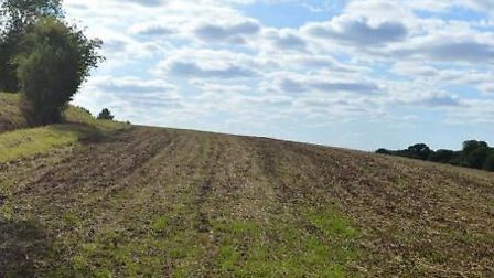 The view south-west across part of the land in the submission to Babergh and Mid Suffolk District Co