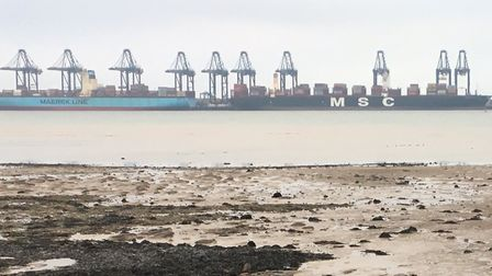 The haul was uncovered by customs officers at Harwich Container Port Picture: CARL MARSTON
