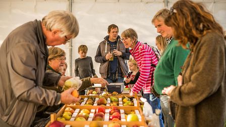 Visitors at the Cider and Song Festival last year Picture: Museum of East Anglian Life
