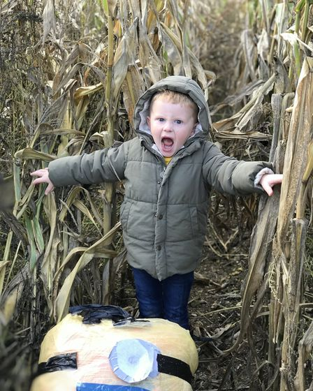 Kids enjoyed running around the Maize Maze finding the special scarecrows on the trail. Picture: Vic