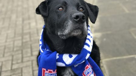 Bowza the hero of Hadleigh led Ipswich Town out at Portman Road in March Picture: VICTORIA PERTUSA