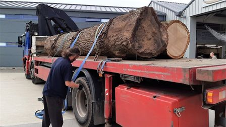 The first of the oak wood has now arrived at the Longshed in Woodbridge to be used in the constructi