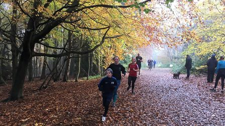 Runners approach the finsh to the Banstead Woods parkrun last Saturday morning. Picture: CARL MARSTO