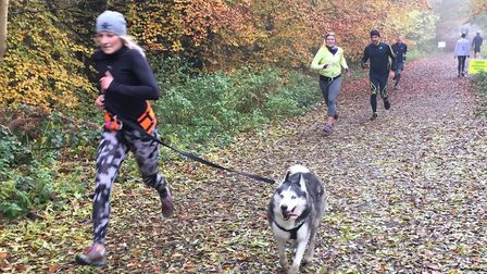 Dogs as well as their owners relish the two-lap woodland course at the Banstead Woods parkrun. Pictu