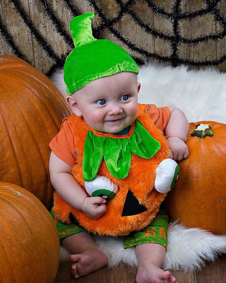Sunny, who is six months old, in a pumpkin costume Picture: RUTH LEACH