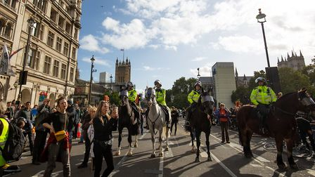 Climate change protesters outside the Palace of Westminster. Officers from Suffolk and Essex were dr