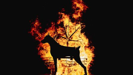 The Black Dog, symbol of The Pyre Parade, a new Ipswich tradition, which invites people to write dow