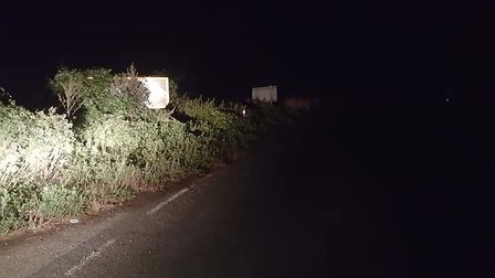 This road sign is almost entirely obscured by the hedge on the side of the road. Picture: JOHN SHERM