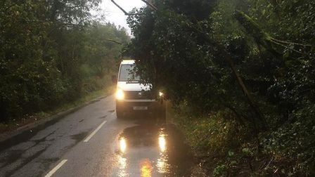 Suffolk Highways has warned about trees and debris causing a danger for motorists. Picture: SUFFOLK