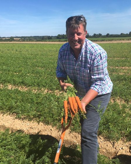 Farmer James Foskett, of James Foskett Farms, Bromeswell, with his carrot crop Picture: SARAH CHAMB