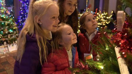 Elsie and Olivia Moores and Lexie and Taylor Owen enjoying the 2018 Sudbury Christmas Tree Festival