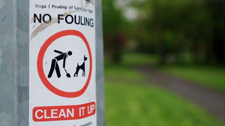 The Holyrood and Sandringham Close Neighbourhood Watch are promoting signs against dog fouling. E