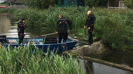 Officers helped scoop the fish out of a horseshoe weir in Nayland Picture: ENVIRONMENT AGENCY