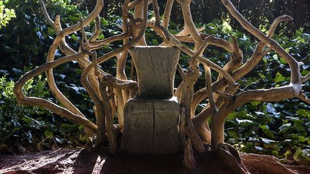 Dramatic stumpery in the gardens at Ickworth which are being illuminated during the run-up to Christ