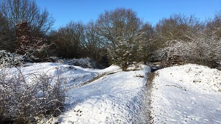 Snow fell heavily on 'The Fuzz' nature reserve off Hadleigh Railway Walk earlier this year - but is